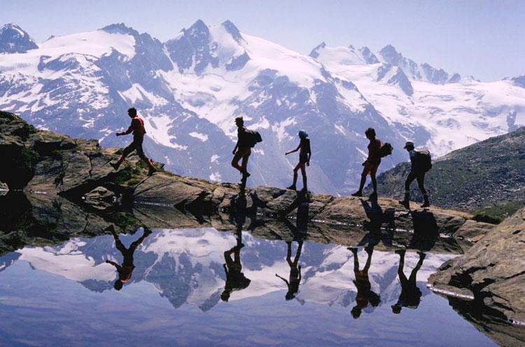 Научный экологический туризм