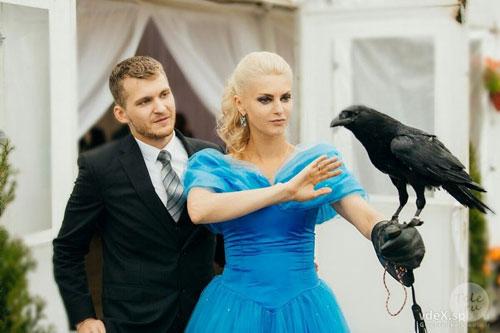 Свадьба Лариной и Далецкого