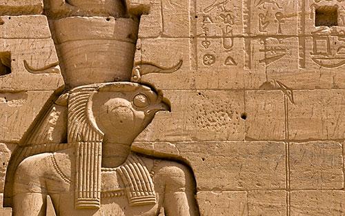 Сокол в Египте