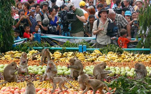 самые-необычные-праздники-мира---обезьяний-банкет