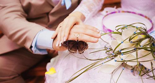 бабочки для свадьбы