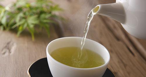 Чай из вербены