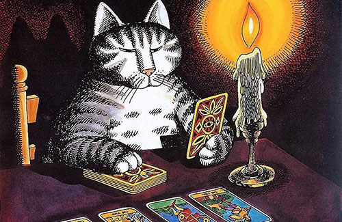 Карты таро и кот
