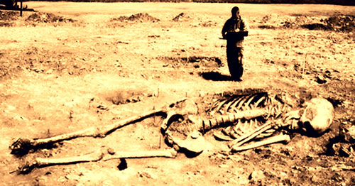Скелет великана