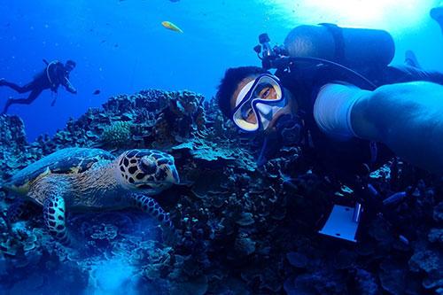 дайвинг на северных марианских островах