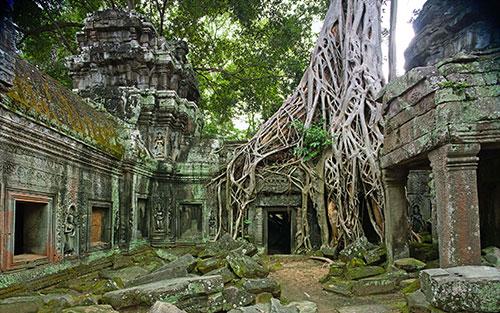 Город-храм Ангкор в зарослях джунглей
