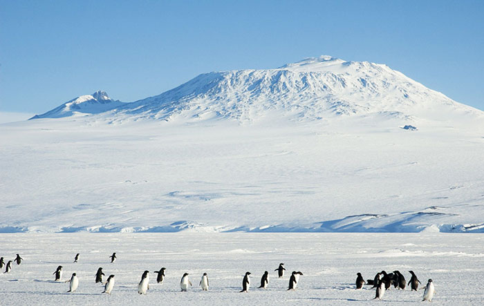 Вулкан Террор в Антарктиде