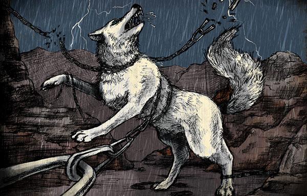 Волк в цепях