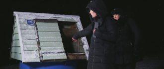 20ая Битва Экстрасенсов 09.11.2019г.- 7ая серия