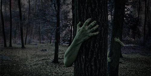 Руки в лесу